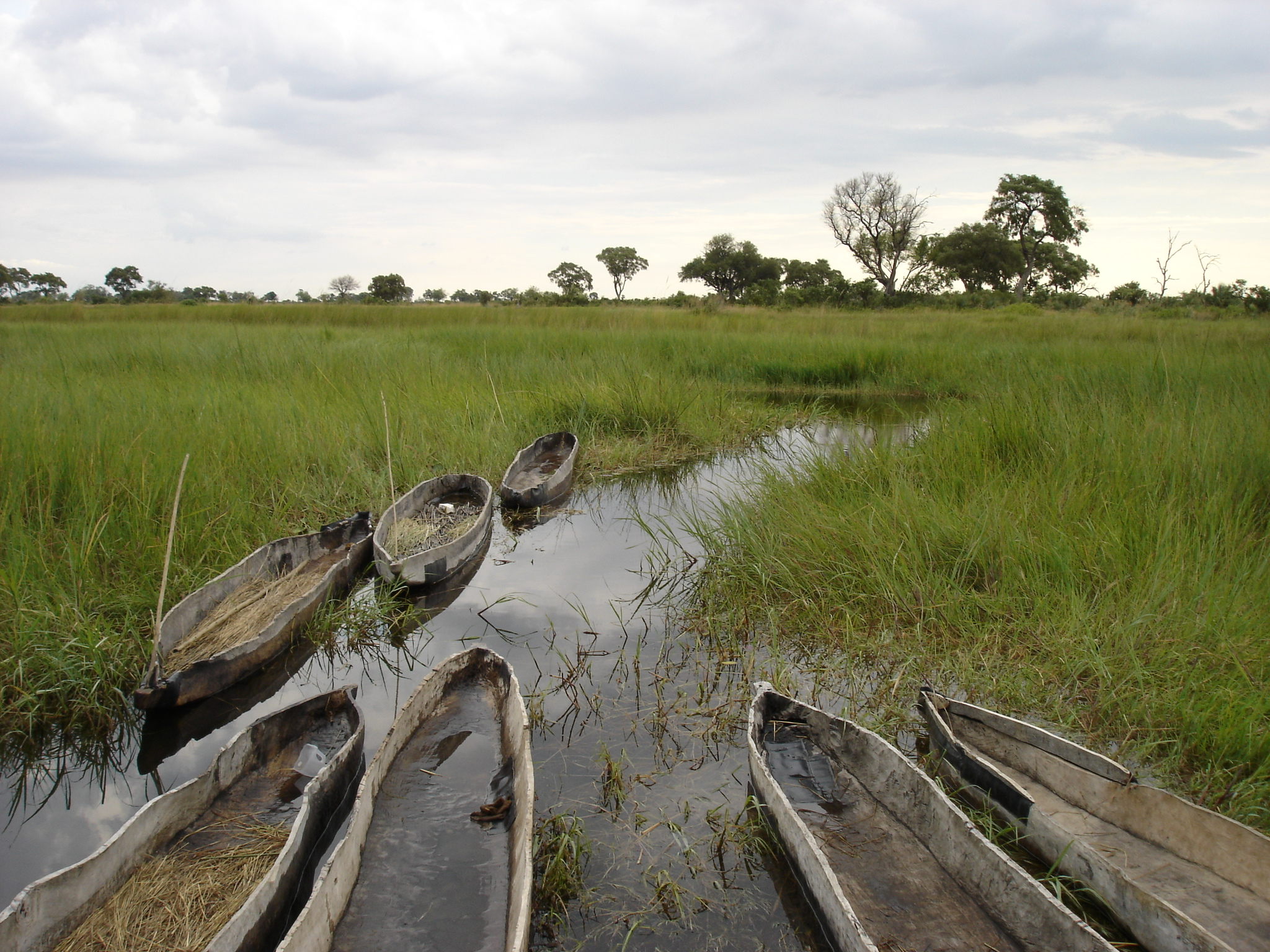 Mokoros in the Okavango Delta